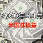 2020年11月の米国株配当金まとめ